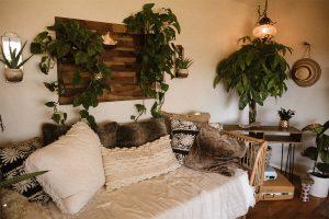 dormitorio rustico con cojines y plantas